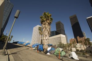 Homeless tents next to freeway