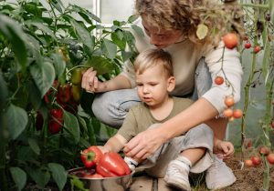 Gardening in FastPaks
